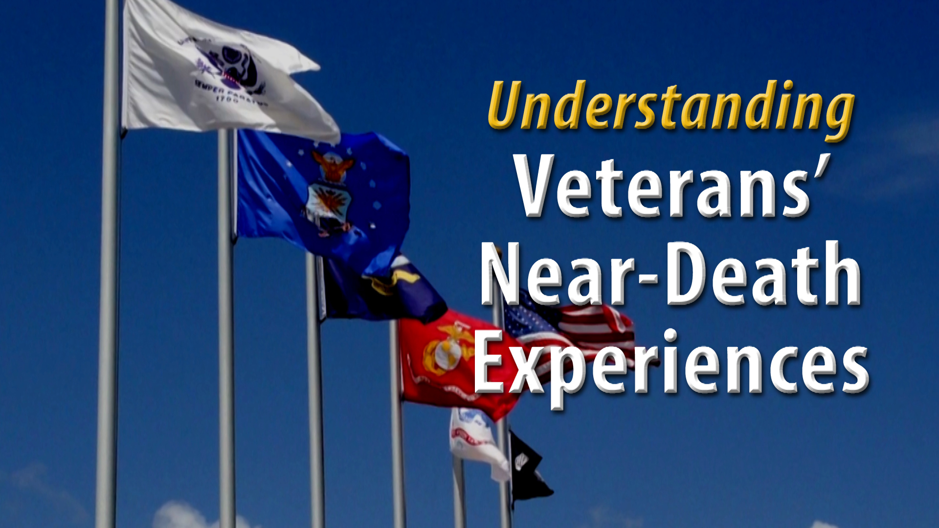 Vet Video Title Page
